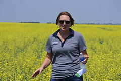 bayer-showcase-nd-17-137 (AgWired) Tags: bayer cropscience showcase plot tour 2017 soybeans canola wheat cereals corn north dakota agwired zimmcomm new media chuck zimmerman