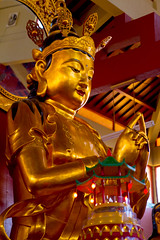 A DI DA PHAT QUAN THE AM BO TAT DAI THE CHI BO TAT GUANYIN KWANYIN BUDDHA 9032 (ketnoivietnam) Tags: 佛 观音 観音 寺 amazing affectionate amitabha architecture art asia avalokitesvara awesome bangkok beautifull beijing palace bhutan bodhisattva bouddha buddha tooth relic temple buddhism buddhist china chinatown chua excellent fantastic flickraward gold golden guanyin hainan hdr history hong kong indian information japan korea kuanim kuanyin kwanyin