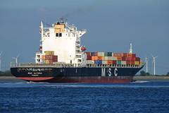 MSC Alyssa DST_1291 (larry_antwerp) Tags: mediterraneanshipping msc container schip ship vessel 船 船舶 אונייה जलयान 선박 کشتی سفينة schelde 斯海尔德河 スヘルデ川 스헬더 강 رود شلده سخيلده rilland nederland netherlands zeeland 9235050