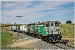 Cabeza de Buey. (pazalberto269) Tags: trainspotting tracks trainspotter tren amazing adif spain nikon photography power diésel d5300
