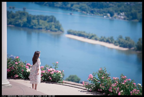 staring into Rhine River