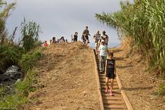 08072017-_POU8050 (Salva Pou Fotos) Tags: 2017 ajuntament fradera grupsenderista observatorifauna pont aiguamolls barberàdelvallès caminada pou