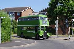 IMGP1946 (Steve Guess) Tags: leatherhead surrey england gb uk lcbs london transport country bus vintage preserved historic aec regent iii rt