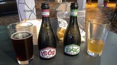 Birra artigianale Baladin  (Leon + Isaac)