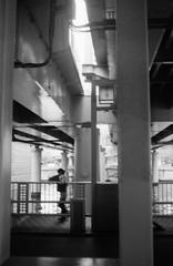 層間剥離 (ply separation) (Dinasty_Oomae) Tags: konical コニカl konica コニカ 白黒写真 白黒 monochrome blackandwhite blackwhite bw outdoor 東京都 東京 tokyo 中央区 chuoku nihonbashi 日本橋
