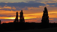 Sun down (donnasmith13) Tags: sunset trees countryside nightfall