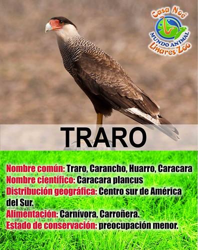 Traro