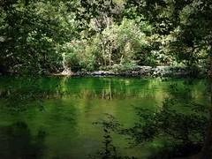 Chiare fresche dolci acque (fotomie2009) Tags: francia fontaine de vaucluse france provence provenza water green sorgue river ngc