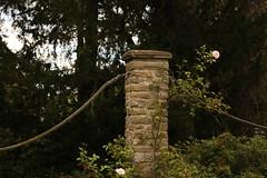 048 (joe_barton17) Tags: canon canoneos50d canon50d 50d 1116mm tokina1116mm leicester botanical gardens