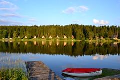 summer on the lake (tewhiufoto) Tags: posudov lipno lake summer southbohemia nikon d3100 czrepublic czechia nature travel holiday natural beauty frymburk
