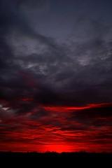 Red Dawn (timvandenhoek1) Tags: ly all indo dawn reddawn sunrise horizon countryside sky clouds landscape midwest ruralmissouri missouri reformconservationarea outdoors sigma19mmf28emount sonyilce6000 timvandenhoek