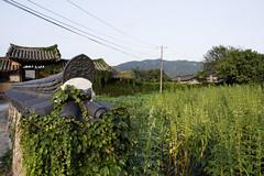 Samjicheon Village 삼지천마을 (Patrick Vierthaler) Tags: samjicheon villa village preserved old korea jeolla jeollanamdo south prefecture 삼지천 마을 südkorea 韓国