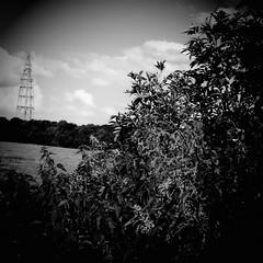 upton (the_gonz) Tags: upton pontefract landscape village yorkshire home