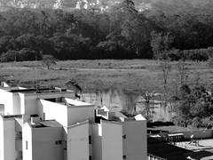 7 (sullmarc) Tags: nikon coolpix digital monochromatic pb bw black blackwhite landscape building architecture f44 iso80 80