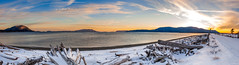 Lummi Island Panorama (EdBob) Tags: lummiisland lummi island snow snowstorm storm sunset panorama orcasisland orcas legoebay seawall road sanjuanislands salishsea winter driftwood waterfront sky colorful cold freezing freeze outdoors nature sea ocean water travel sun pacificnorthwest pugetsound washington washingtonstate westernwashington whatcomcounty willows inn edmundlowephotography edmundlowe usa america 2017 allmyphotographsare©copyrightedandallrightsreservednoneofthesephotosmaybereproducedandorusedinanyformofpublicationprintortheinternetwithoutmywrittenpermission