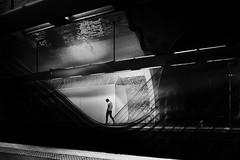 ...losingdirections... (*ines_maria) Tags: light monochrome city street streetphotographie people person tube transportation dark urbanart urbanexploration metro metrostation paris france man panasonicdmxgx8 bw blackandwhite blancetnoire