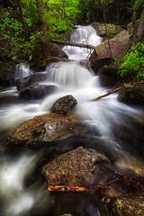 Upper Beede Falls (Robert Clifford) Tags: 5d bearcampriver beedefalls canon markiii nh newengland newhampshire photowalk robcliffordphotography sandwich sandwichnotchroad robertcliffordcom scenic spring tourism trail view water waterfall