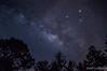 Milky Way (Juan Lisbona) Tags: sayula mexico víaláctea galaxia constellation night galaxy stars milkyway