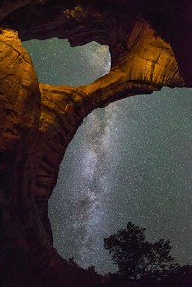 The Cosmic Buttress