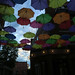 colorful umbrellas - Keene, NH