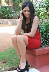 Indian Actress NIKESHA PATEL Hot Sexy Images Set-1 (29)