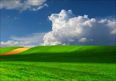 Green field (Katarina 2353) Tags: spring katarina2353 katarinastefanovic vojvodina serbia