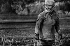 While we are at it...let's have fun! (Frank Busch) Tags: frankbusch frankbuschphotography imagebyfrankbusch photobyfrankbusch arunachalpradesh bw blackwhite blackandwhite farming field fieldwork fieldworker india monochrome woman wwwfrankbuschname wwwfrankbuschphoto