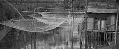 nets (=Mirjam=) Tags: nikond750 bw fishing nets traditional ulcinj montenegro roadtrip vacationing traveling juni 2017