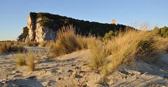 "Questa è ""Maremma"" - This is ""Maremma"" (Jambo Jambo) Tags: mare sea seascape panorama landscape parcoregionaledellamaremma parco park alberese grosseto maremma maremmacountryside maremmatoscana toscana tuscany italia italy nikond5000 jambojambo spiaggia beach collelungo torredicollelungo"