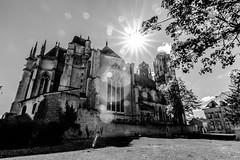 Cathédrale St Etienne de Toul (David Sch.) Tags: eglise favori france lorraine meurtheetmoselle toul
