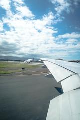 Outside the Airplane 2 (Kou Thao) Tags: animals nature wildlife hawaii scenery photograhy kokohead adventure vintage vibes tropical airplane sky sunset clouds traveler luau horse jungle