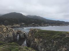 Point Lobos State Park (Hailey NM) Tags: westcoast ocean pointlobos california