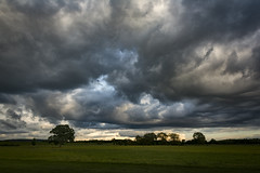 Boiling sky (cliveg004) Tags: croome croomepark worcestershire clouds boiling rural countryside sky cloudjunky trees nikon d5200 1685mm