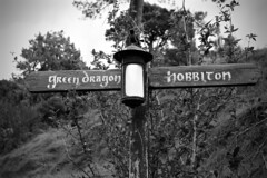 IMG_3925 (sagamalm) Tags: new zealand travel canon hobbiton lordoftherings thehobbit
