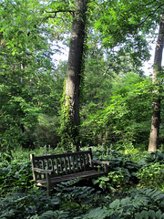 IMG_6930a (24FM) Tags: bench kingwood center mansfield ohio june trees pastoral forest park shady spring summer secluded shadows ferns underbrush