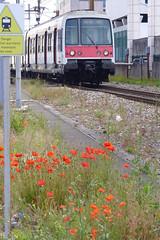 La SNCF ne traite plus... tant mieux (Portocéan) Tags: sceaux antony chevreuse cernay orsay étangshollande