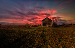 Let me Have My First Kiss (J Thomas Photography3) Tags: barn vineyard sunset michiganbarn grapes grapevine field grapelovers peaceful landscape pink red