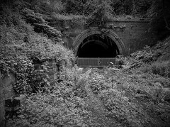 Ethereal Grot (Jason_Hood) Tags: disused abandoned railway railroad tunnel dudley