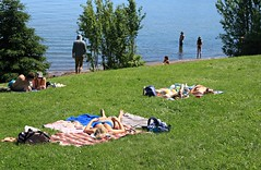 Baking in the Sun (Cindy's Here) Tags: baked tanning hot beach wildgoosebeach sunnah ontario canada canon ansh 245365 scavenger20