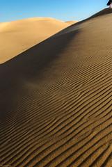 Dunes riding (dominiquesainthilaire) Tags: nikon nikond80 egypte egypt whitedesert désertblanc dunes sand sable shadows ombres travel voyages orange yellow jaune bleu blue worldtrekker