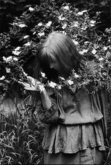 Wild Roses (Arslan Ahmedov) Tags: blackandwhite portrait roses bulgaria plovdiv