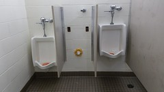 Sugar Grove Stars & Stripes Festival (dankeck) Tags: independenceday fourthofjuly 4thofjuly july4th urinals missing restroom fairfieldcounty