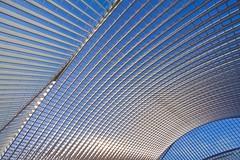 blue sky (ohank1951) Tags: shadows abstract architecture steel concrete glass lines curves blue sky gare station bahnhof calatrava luikguillemins luik lüttich liègeguillemins belgië labelgique belgium canoneos1100d efs1022mmf3545usm
