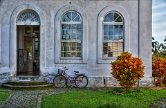 D71_4681z1 (A. Neto) Tags: d7100 nikon nikond7100 sigmadc18250macrohsmos color house door windows windowsdoors bicycle reflections architecture old plant morretes