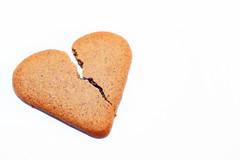 Broken (Helena Johansson 71) Tags: broken macromondays gingerbread cookies food eatable macro nikond5500 nikon d5500 brown whitebackground overexposed