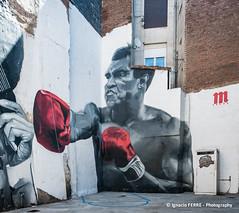 Muhammad Ali (Ignacio Ferre) Tags: león comunidaddecastillayleón spain españa lumix panasonic pintura painting mural muhammadali cassiusclay boxeo boxeador mohamedali boxer