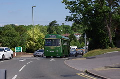 IMGP1953 (Steve Guess) Tags: leatherhead surrey england gb uk lcbs london transport country bus vintage preserved historic rf aec regal iv