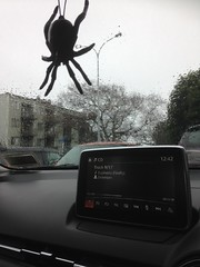 Giant spider sighted in Onehunga... well not really... it's my new car air freshener!! It rocks. So me! (SandyEm) Tags: 24 june 2017 24june2017 onehunga carairfreshener rain windscreen