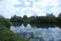 2017-05-12 12-09-27 - IMG_8712 (rudolf.brinkmoeller) Tags: wandern slowenien laibachermoor ljubljanskobarje landschaft natur ljubljanica