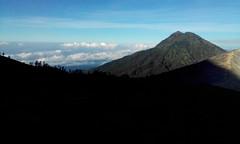 Ijen View (Canis lupus alba) Tags: kawah ijen kawahijen indonesia java licin banyuwangi volcano caldera cloud hiking